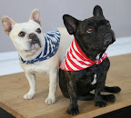 Don't we look great wearing Reversible Star Bandanas - Item: 11143193 - Made from 100% cotton, this bandana features a convenient reversible design for 2 styles in one.
