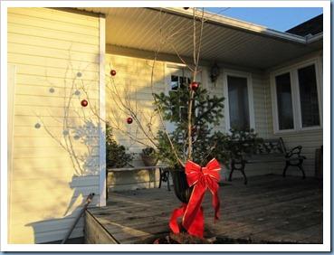 20111208_christmas-decs_001