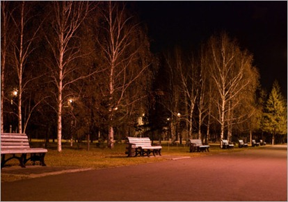 1534418-383380-night-asphalt-alley-with-benches-in-the-russian-park