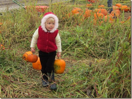 10-15 Pumpkin Patch 14