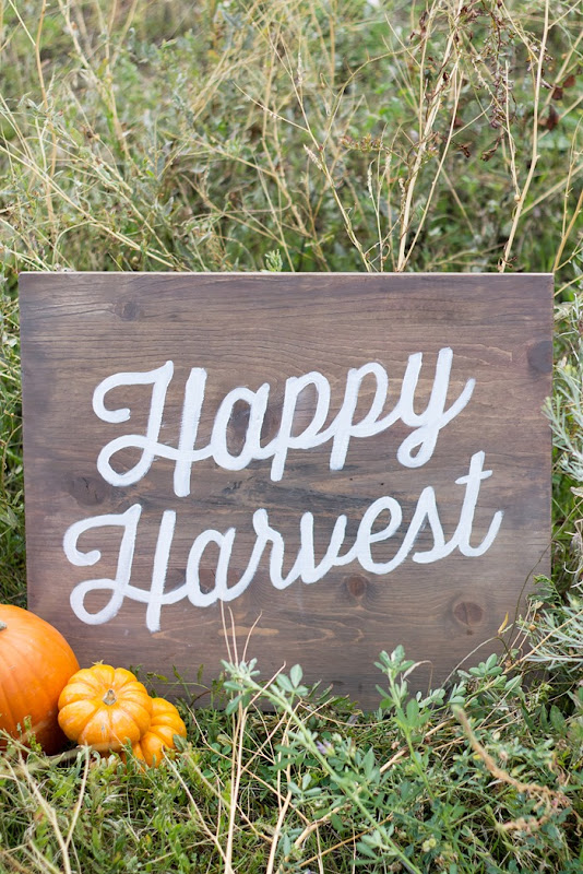 Hand painted Happy Harvest Halloween Fall DIY Wooden Sign at www.alexamariezurcher.com