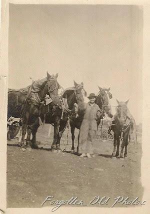 Foyur Horses DL Antiques