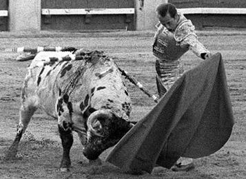 Antonete_xcon_toro_blanco_1966[1]