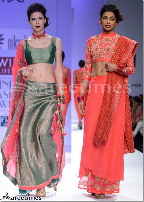 Nikasha_Sarees_WIFW_Autumn_Winter_2013(2)