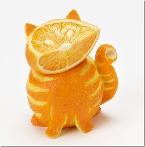 orange-you-glad-youre-a-cat