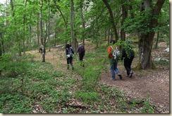 départ forêt de Nemours - Copie