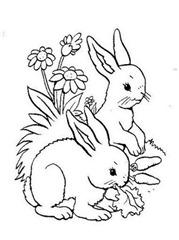 coelho-da-pascoa-para-colorir-3
