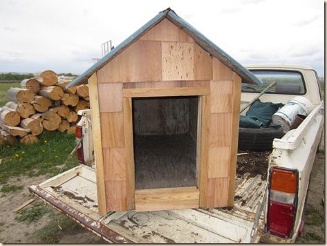dog house 036
