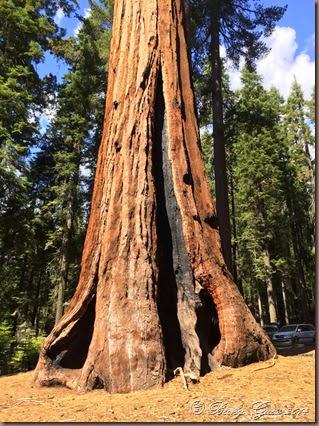 09-21-14 Yosemite 003