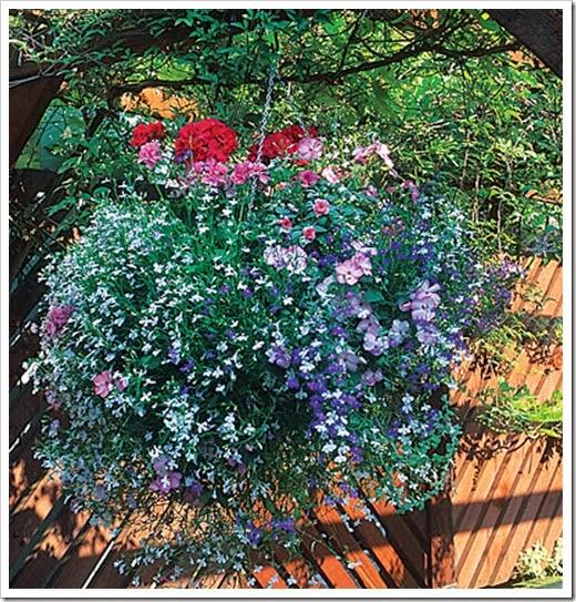1725120-flowers-slide14-xl