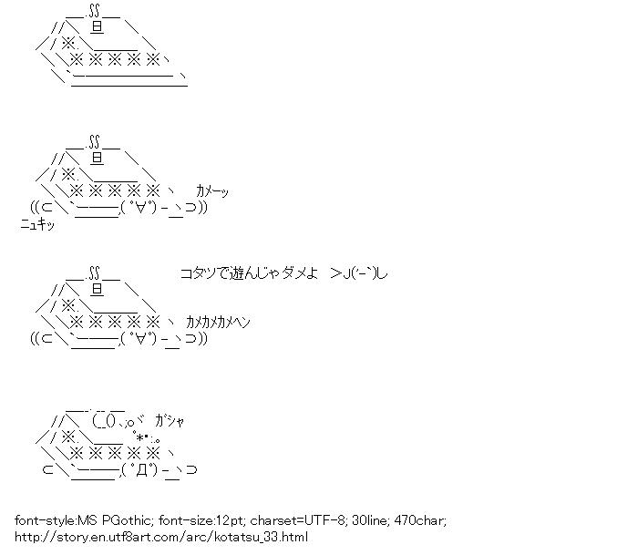 Kotatsu,Tortoise,Tea,Ka-chan
