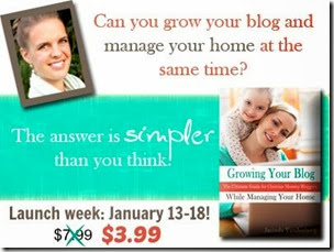 growing your blog sale