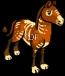 Prehistorical Horse