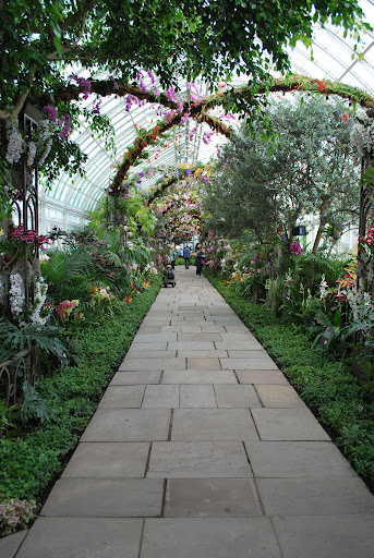 Here is the second space of the Orchid Show. It was inspired by the promenade at the New Amsterdam Theatre.