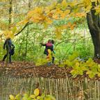 Bezoek aan het bos 2de leerjaar 13 nov