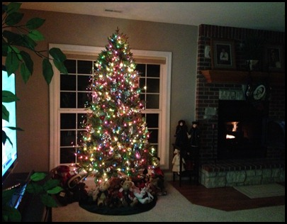 lower level tree