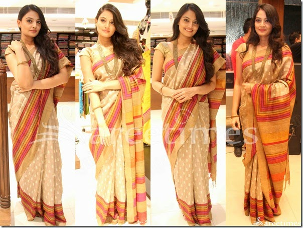Nikitha_Narayan_Embroidery_Saree