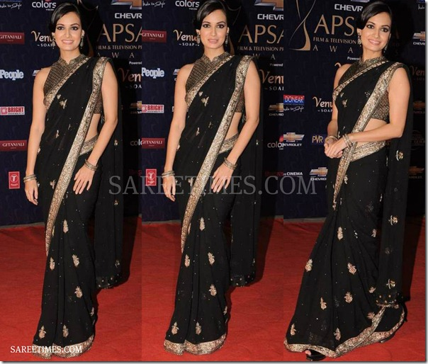Dia_Mirza_Black_Saree