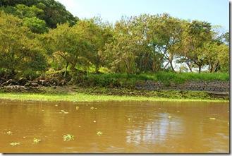 31-07-2011 Rio do Engenho 051