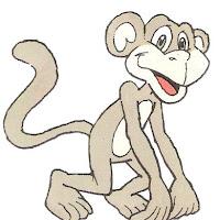 macaco colorido.jpg