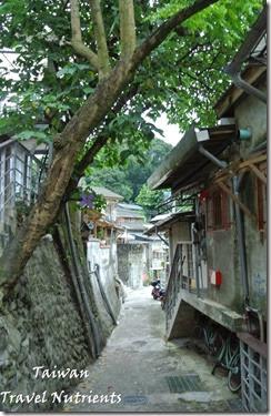 寶藏巖國際藝術村 (79)