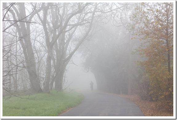 111220_fog_greenbelt2