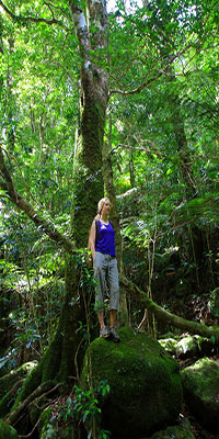 Bronwen in the rainforest, Lamington National Park