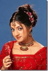keerthi-chawla closeup_in saree