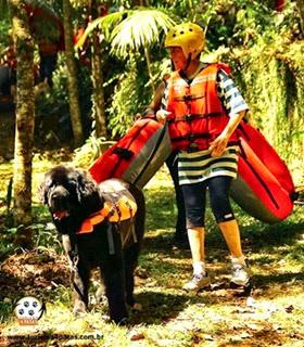 Pets Adventure 13 (77_1) (15)