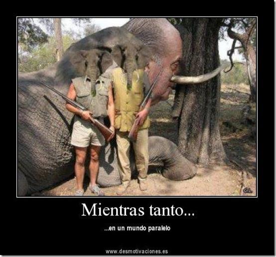 rey caza elefante