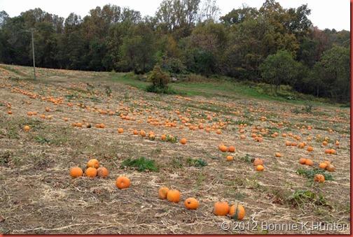 VA_Oct2012 063