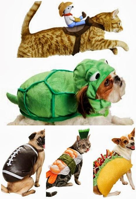 Halloween Pet Costumes 2