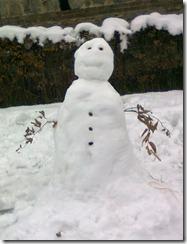 Pupazzo di neve costruito nottetempo nei pressi delle OGR