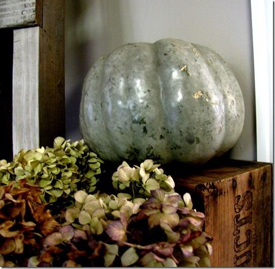 green pumpkin 1