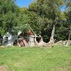 2012-baran-owca-098.jpg