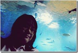 เที่ยวหนองคายกับ รรบ.สำราญฯ21-2011-03-08