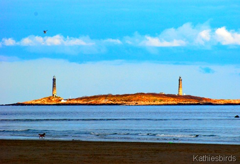 1. Twin lighthouses-kab