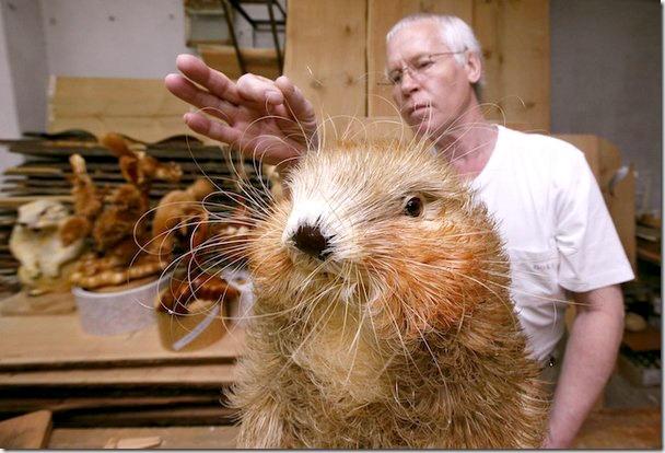 wood-shavings-animals-4