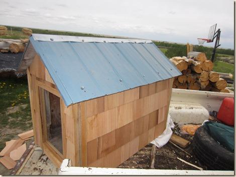 dog house 038