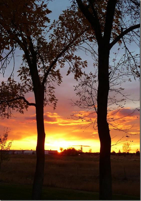 sunsets 020