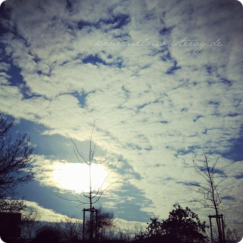 12v12 Dezember 2012 (8)