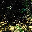 Enduro_Montefaro_2014 (86).jpg