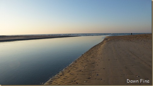 sunrise walk edisto_044