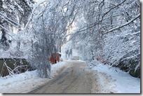paisajes nevados (34)