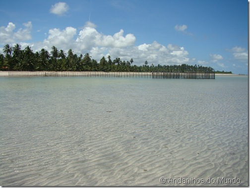 Praia de São Miguel dos Milagres Rota Ecológica de Alagoas