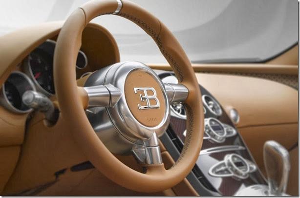 Veyron Vitesse Legend Rembrandt Bugatti  (2)