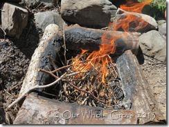 flame spirit7