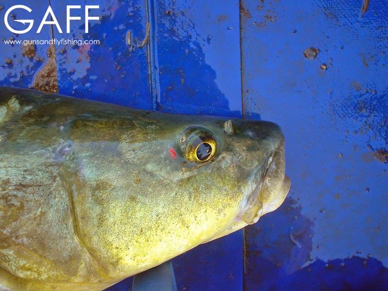Largemouth-Yellowfish-Fly-Fishing (8).jpg