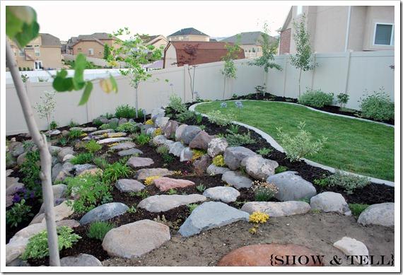 backyard 2011 016