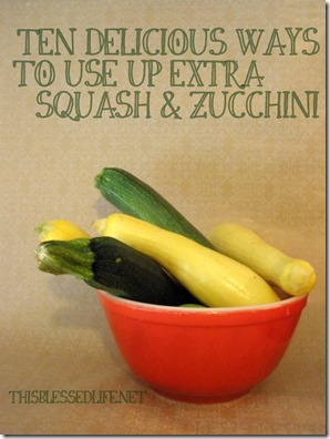 10 Ways to Use Extra Zucchini - This Blessed Life 011
